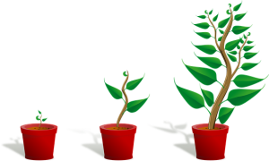 growth3